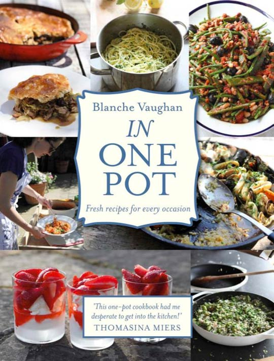 picture of in one pot book
